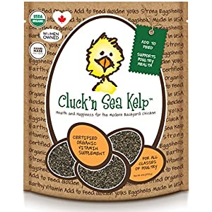 Treats For Chickens  Certified Organic  Cluck'N Sea Kelp, 6-Pound, Vitamin Supplement 61