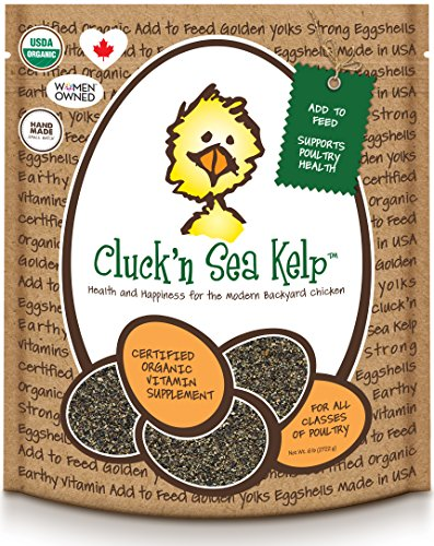 Treats for Chickens  Certified Organic  Cluck'n Sea Kelp, 6-Pound, Vitamin (Kelp Treats)