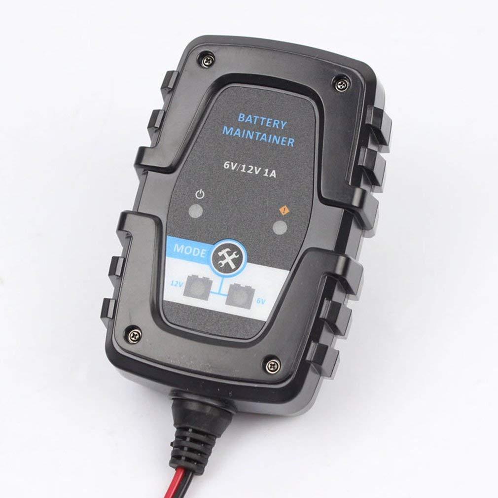 FOXSUR 6V 12V 1A Moto Coche AGM Gel Pulse Repair Smart ...