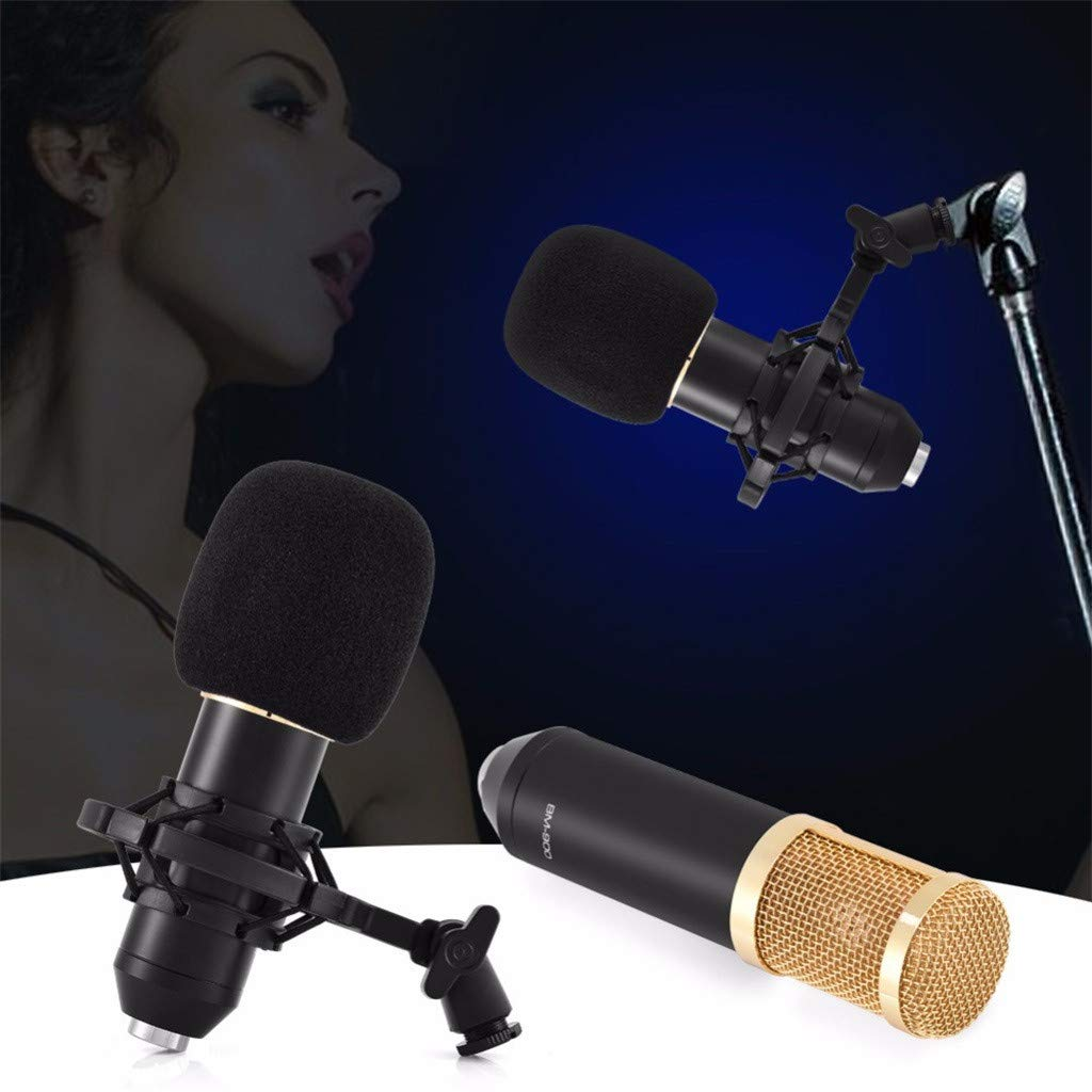 Professional Studio Broadcasting Recording Condenser Microphone with Suspension Scissor Arm Stand Shock Mount and Pop Filter for Chat Singing Live Show On Line PC Laptop Skype MSN