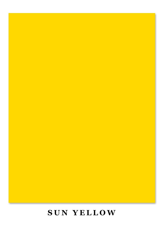 Superfine Printing Inc.. Leuchtende Farbe Karte Stock Papier, 65Lb 85 X 11 Zoll 50 Blatt B012XHN3IS | Kunde zuerst