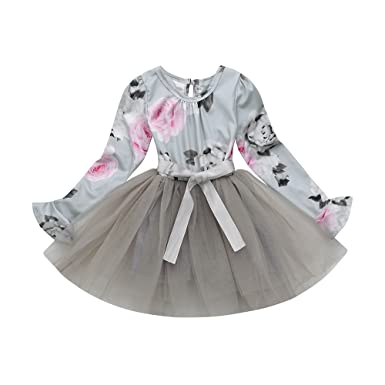 fec9a6f565 Birdfly Little Girls Fairy Lace Princess Dress Ruffles Ballerina Tulle Tutu  Toddlers Dress up Outfits Wedding Party (4T, Gray(Long-Sleeved)):  Amazon.co.uk: ...