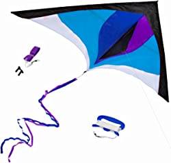 Top 14 Best Kites For Kids (2020 Reviews & Buying Guide) 1