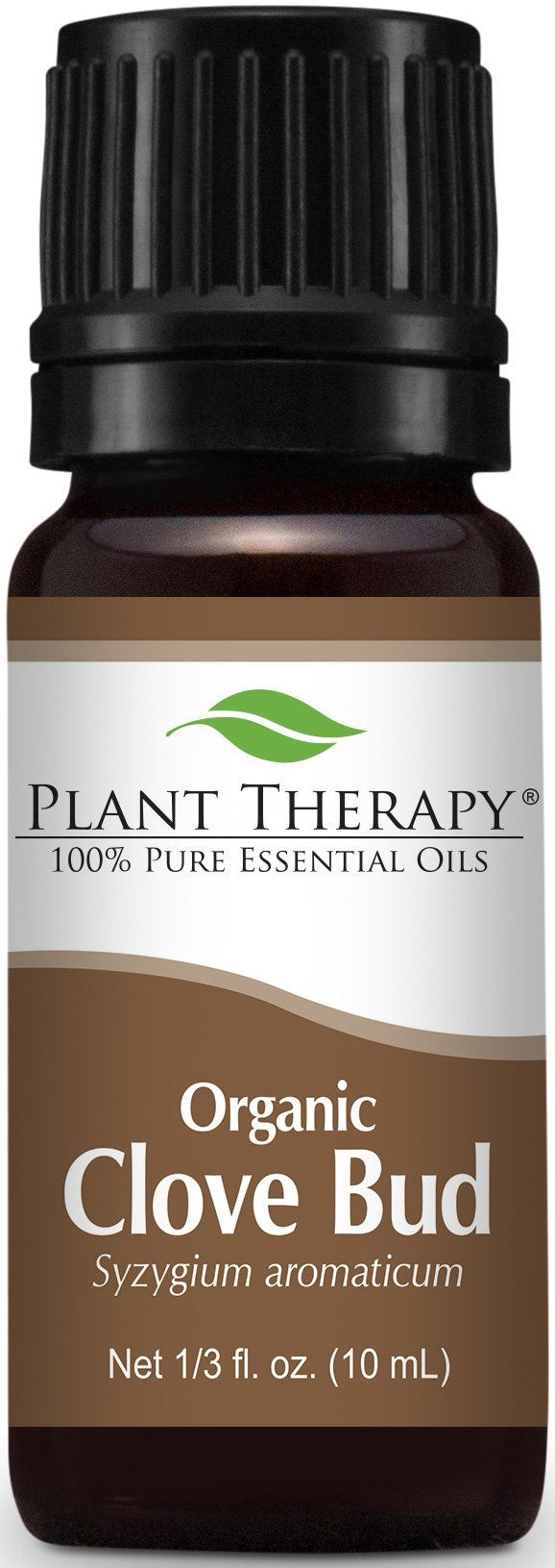 Plant Therapy USDA Certified Organic Clove Bud Essential Oil. 100% Pure, Undiluted, Therapeutic Grade. 10 ml (1/3 oz).