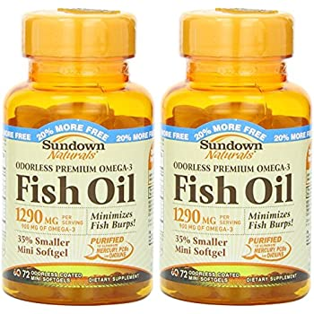 089f8c686f5 Sundown Naturals Naturals Odorless Premium Omega-3 Fish Oil