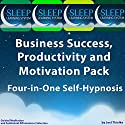 Business Success, Productivity, and Motivation Pack: Four in One Self-Hypnosis, Guided Meditation, and Subliminal Affirmations Collection (The Sleep Learning System) Audiobook by Joel Thielke Narrated by Joel Thielke