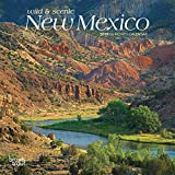 New Mexico, Wild & Scenic 2019 7 x 7 Inch Monthly Mini Wall Calendar, USA United States of America Southwest State Nature (Multilingual Edition)