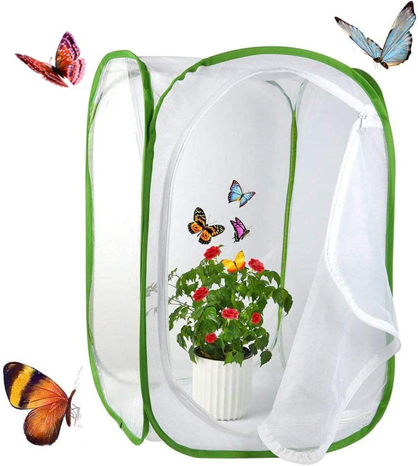 Yeelan Mariposa Hábitat Collector de Insectos Plegable Net Mesh Insects Plant Jaula Terrario Pop-up para Niños atrapando grillos/Luciérnaga/orugas/Mariquita (Verde, Gran tamaño)