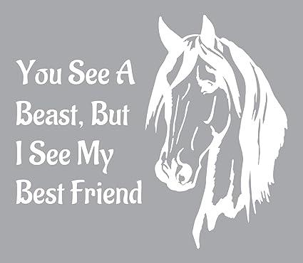 Amazon.com: Wild Spirit Horse Quote Decoration Vinyl Wall ...