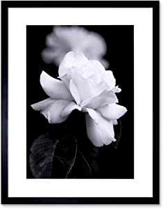 The Art Stop Photo Nature Black White Rose Petal Flower Framed Print F12X4204