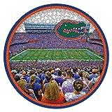 NCAA Florida Gators Stadium Puzzle 500-Piece
