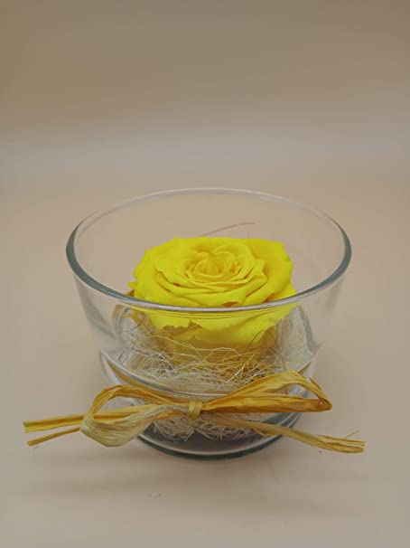 Rosa eterna Amarilla. Gratis TU ENVÍO Prime. Rosas eternas Amarillas. Rosa preservada Amarilla. Cristal con Rosa eterna sobre Base de sisal. Hecho en España.: Amazon.es: Hogar