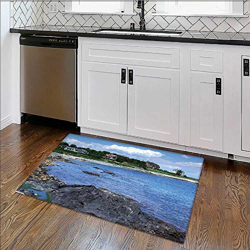 Rug Easy to Clean, Durable Rhode Island Coast Rug for Kitchens W17