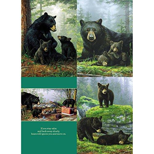 Tree-Free Greetings Hautman Black Bears All Occasion Card Assortment, 5 x 7 Inches, 8 Cards and Envelopes per Set (Hautman Black Bear)