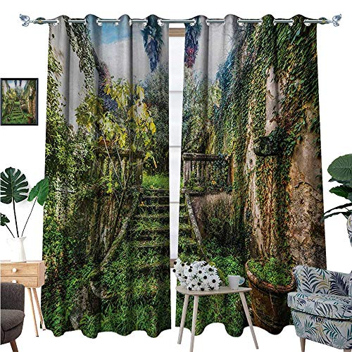 (BlountDecor Nature Patterned Drape for Glass Door Ancient Fairytale Theme Hidden Garden with Botanic Trees Flowers Ivy Image Print Waterproof Window Curtain W96 x L84 Multicolor)