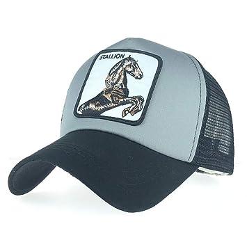Unexceptionable-Baseball Caps Gorra de béisbol Unisex para Mujeres ...