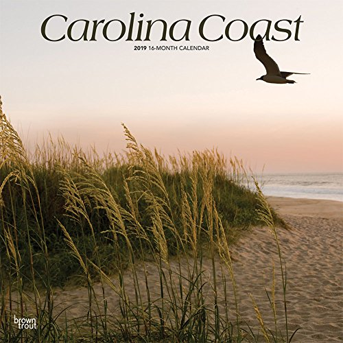 Carolina Coast 2019 12 x 12 Inch Monthly Square Wall Calendar, USA United States of America Southeast State Nature (Multilingual Edition)