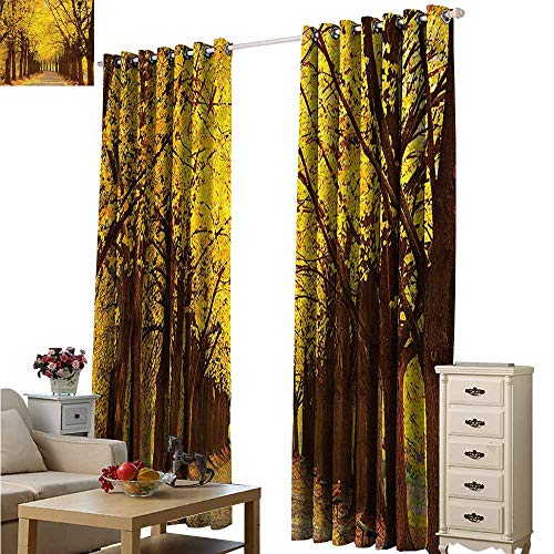 (Beihai1Sun Curtains for Living Room Landscape Fall Leaves Kiev Ukraine Space Decorations W72x84L)