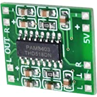 Generic CT-PAM8403 Pam8403 Dc Amplifier Board Class D Usb Power Audio Module, 5v, 3w, Green