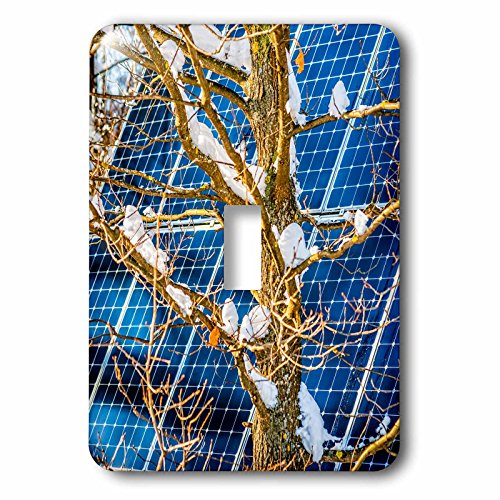 3dRose Alexis Photography - Objects - Young snow covered oak tree and a solar power panel in winter park - Light Switch Covers - single toggle switch (lsp_280889_1) by 3dRose