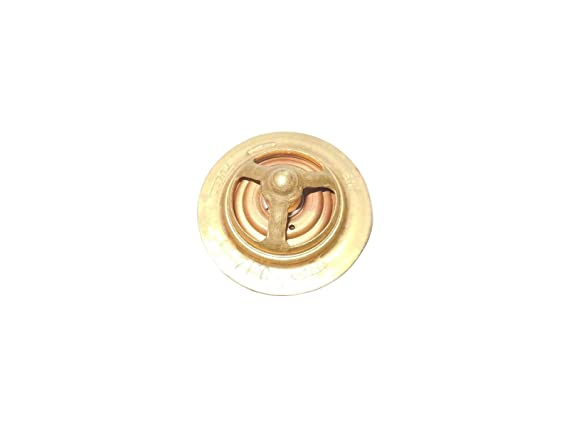 Amazon.com: New Ford New Holland Tractor 1510 1710 Thermostat & Gasket 71°C /160°F: Automotive