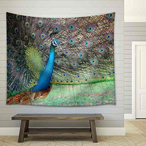 Portrait of Beautiful Peacock with Feathers Out Fabric Wall