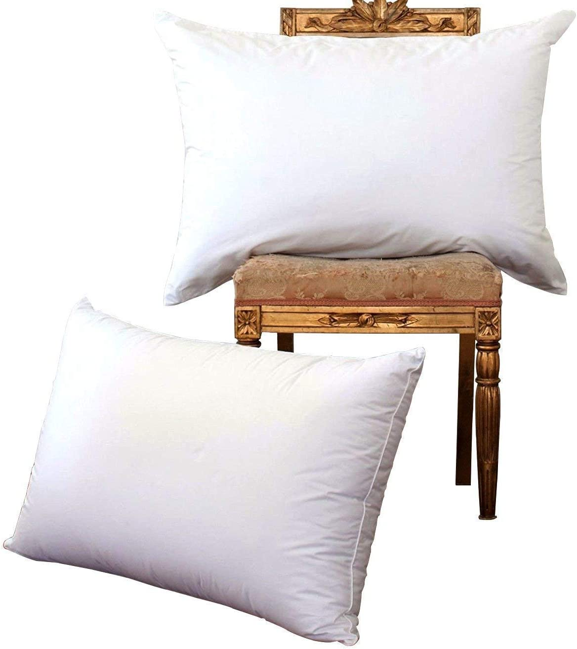 70% Off NP Luxury Goose Down Pillow