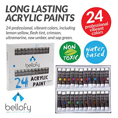 Acrylic Paint Set (24-Colors) Artist Painting, Hobby Art Supplies | Works on Canvas, Glass, Nails, Metal, Fabric, Clay, Terra Cotta | Beginners, Kids and Adults - Best Painting Products Online - Art Supply Case Metal
