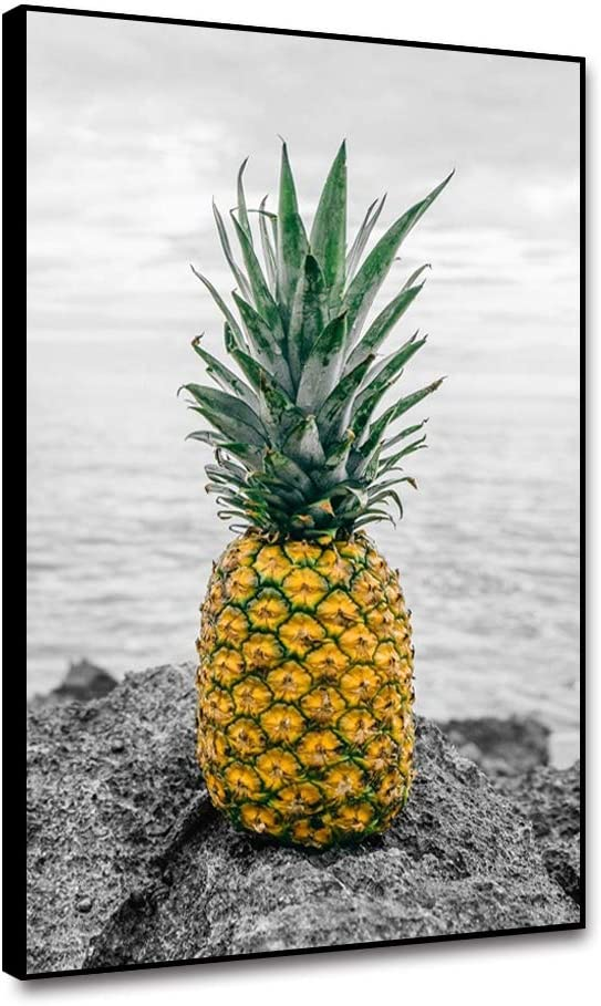 Musemailer Pineapple Canvas Wall Art 12