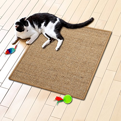 Floori® Sisal Kratzteppich   Naturfaser: nachhaltig und umweltfreundlich   Cork, 100x100cm