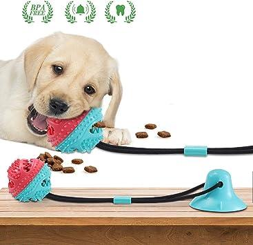 Charminer Hundespielzeug mit Saugnapf, Multifunktions Pet
