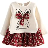 Vestidos niña otoño Invierno, ❤️ Amlaiworld Vestidos de Fiesta de Tul de Encaje de Flor de Encaje de bebé niñas Ropa Vestido de Princesa 2 Años - 6 Años