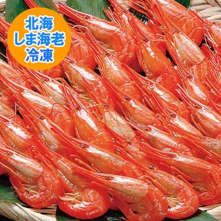 海老 北海道産 しまえび 北海しまえび 約500g 北海道 道東産 えび