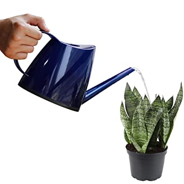 Buyoung Watering Can for Plants, Gardening, Home Decor, 47oz