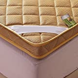YCTTMM Thicken mattress,Matt mat Thai massage bed Floor bed Student dormitory beds-D 120x200cm(47x79inch)
