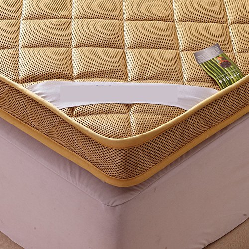 YCTTMM Thicken mattress,Matt mat Thai massage bed Floor bed Student dormitory beds-D 120x200cm(47x79inch) by YCTTMM