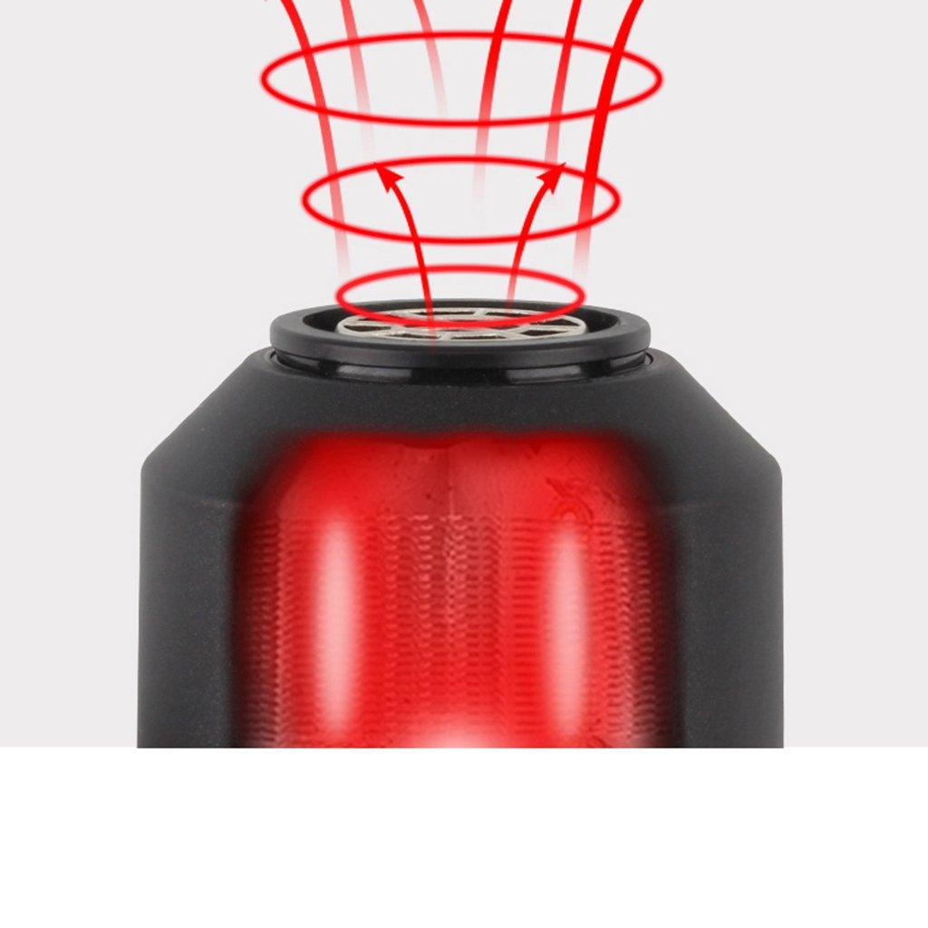 World Secador de Pelo Viajes Secador de Pelo Secador de Pelo Secador de Pelo para Hombres Mini secador de Pelo Ionic (Color : C): Amazon.es: Hogar