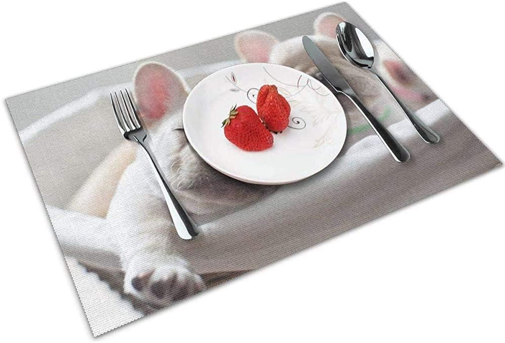 Tovagliette per cani appena nati Set di 6 per tavolo da pranzo Tovagliette lavabili resistenti al calore antiscivolo Tavolo da cucina Stuoie facili da pulire 45X30Cm