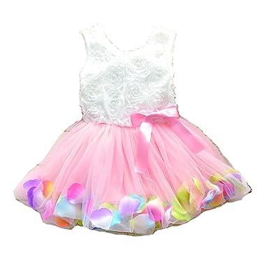a009ec43952d Amazon.com  Just Model Kids Girls Princess Rose Garden Flower Petal ...