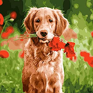 Paint by Numbers for Adults and Kids : DIY Painting Craft Kits, Frameless 16 x 20 Acrylic Paint Kit - 3 Brushes, Advanced Paint, Linen Canvas Set - Paintings by Number Golden Retriever Dog with Flower