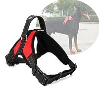 Atomzone Arnés para Perro ergonómico con Correa Ajustable - Máxima protección y Comodidad para tu Mascota en Todo Momento L (Grande)