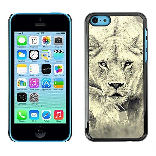 TopCaseStore / caoutchouc Hard Case Housse de protection la Peau - Lion Photo Female Hunting Safary Big Cat - Apple iPhone 5C