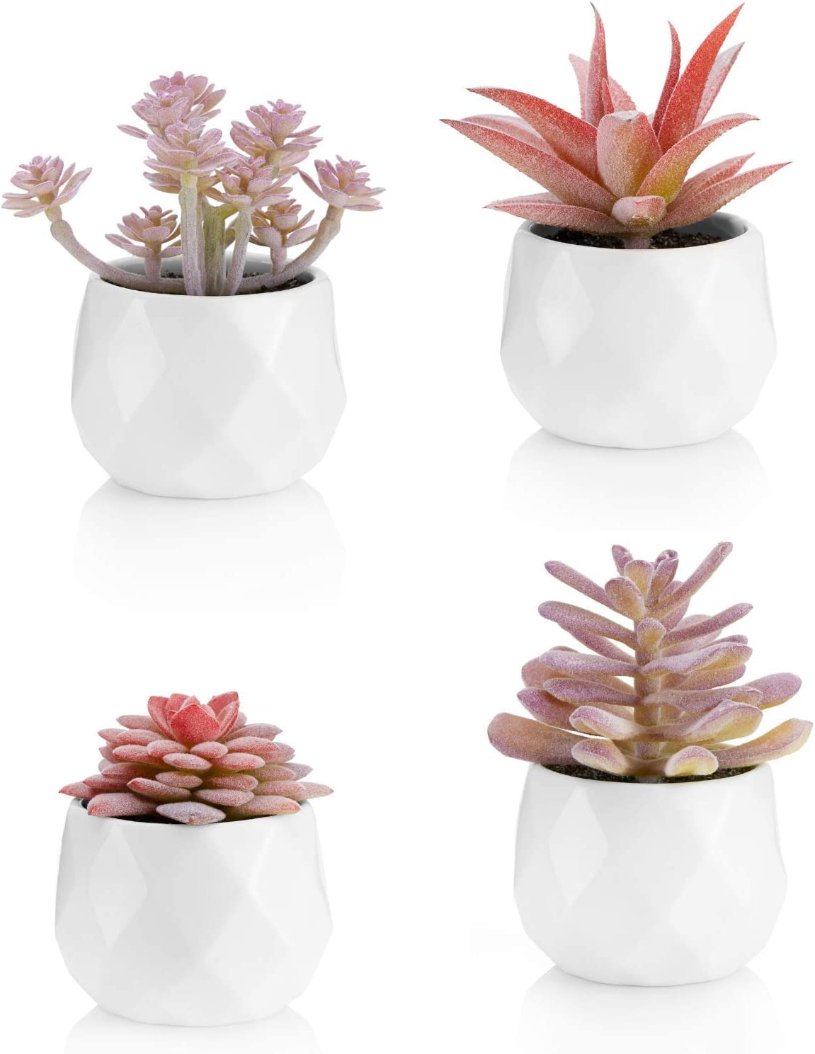 Amazon Com Viverie Faux Succulents In White Ceramic Pots For Desk Office Living Room And Home Decoration Fake Plants Included Set Of 4 Artificial Succulents Kitchen Dining