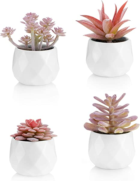 Viverie Faux Succulents In White Ceramic Pots For Desk Office Living Room And Home Decoration Fake Plants Included Set Of 4 Artificial Succulents Amazon Ca Home Kitchen