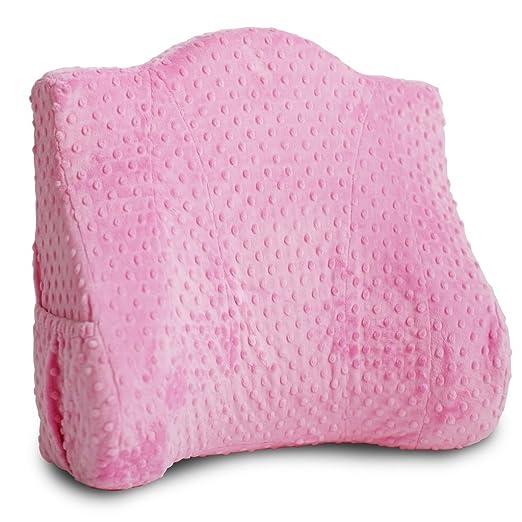 Amazon.com: Deluxe – Soporte de la espalda almohada para ...