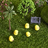 Specification: Material: Resin Type: Chick Size: heigh 1cm Feature: Fine workmanship is essential micro landscape DIY landscaping. Suitable for succulents,various other decorative fence potted. Mini but not a toy, decorate one of a small gard...