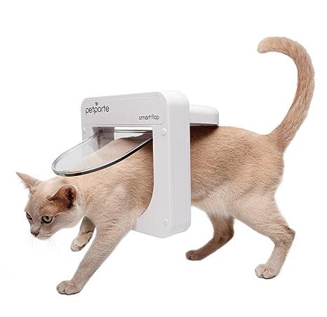 Gatos Puerta petporte Smart Flap - Electrónica Para Micro ...