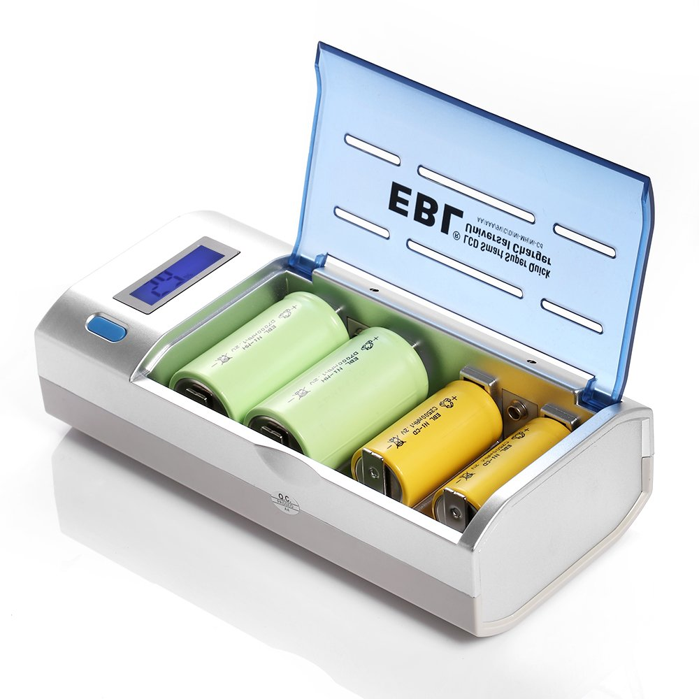 EBL Rechargeable Batteries Family Combo with Charger [4 Pack 2300mAh AA + 4 Pack 800mAh AAA + 2 Pack 5000mAh C + 2 Pack 10000mAh D + 2 Pack 280mAh 9V + Universal Charger] by EBL