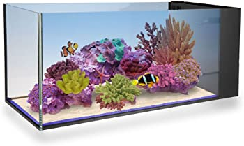 Innovative Marine 20-Gallon Nano Reef Tank