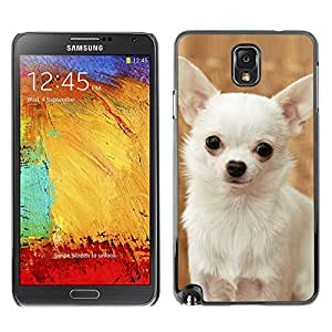 VORTEX ACCESSORY Hard Protective Case Skin Cover - happy white Chihuahua dog small - Samsung Galaxy Note 3 N9000 N9002 N9005